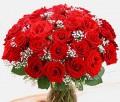 Three Dozen Rose Bouquets