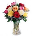 Mixed Color Roses in Vase