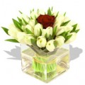 White tulips with single rose in Vase