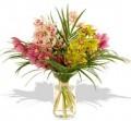 Cymbidiums in vase
