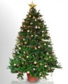 Christmas tree-Natural