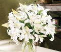 White Lilly Bouquets