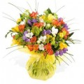 Mixed Freesias Hand Bouquets