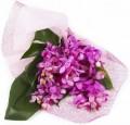 Mokara Orchids bouquets
