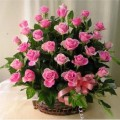 Simply Charming Roses Basket arrangment