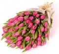 Pink tulips Handtied